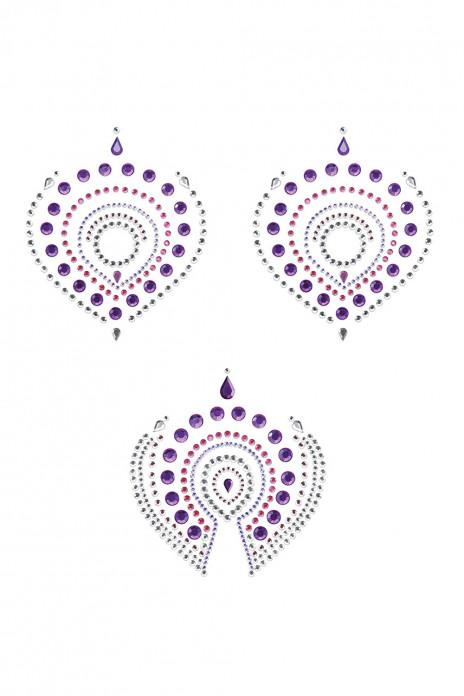 Flamboyant - Purple & Pink