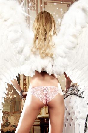 Lace & Mesh Panty